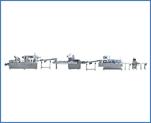 BZLX-120B Full-Automatic Packing Production Line
