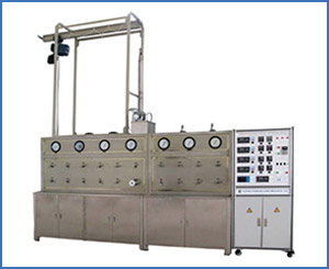 HB221-40-100 Supercritical CO2 Extraction Machine